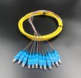 Treccia limitata 12 memorie di fibra ottica per la trasmissione della rete ed il CCTV senza fili