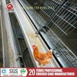Matériel automatique bon marché d'aviculture de poulet de cage d'oiseau
