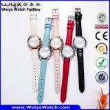 Orologio casuale della donna del quarzo del ODM di modo (Wy-078C)