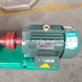 고품질 산업 주문을 받아서 만들어진 나선식 펌프