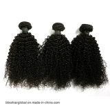 비꼬인 컬 브라질 Virgin 머리 100% 사람의 모발