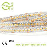 Istruzione Autodidattica 90 3528 striscia bianca di lumen LED dell'indicatore luminoso 12V 24V di SMD 240LEDs/M alta