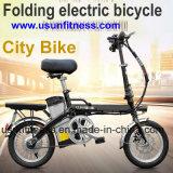 전기 E 자전거를을%s 가진 접히는 14inch 포켓은 건전지를 제거한다