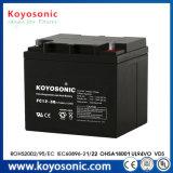 Batterie für Batterie 24V der Laufkatze-Solarstraßenlaterne-Batterie-200ah