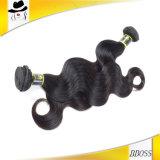 Premiers cheveux humains brésiliens Embrouiller-Résistants