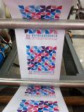 Papier d'aluminium en plastique de papier de machine d'impression de Flexography de Double-Couleur (CE) (YT-2600-2800-21000-21200)