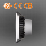 La ENEC AEA LED 12W 4 pulgadas de color blanco cálido Downlight regulable