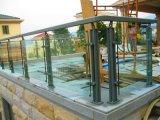 特別な螺線形デザイン12mm緩和されたガラスの純木Stairscase