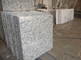 工場直接中国の花こう岩の平板のタイル