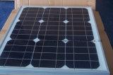 Mono fornecedor pequeno 10W 20W 30W 40W 50W do ouro do painel solar