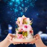 Flor natural del 100% Rose para el regalo de la tarjeta del día de San Valentín