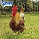 Hexagonal Chicken Rabbit Wire Mesh