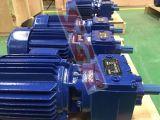 Sgr 나선형 기어 흡진기 R 시리즈 나선형 모터 10HP 및 기어 박스
