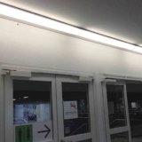 4241명의 OEM 선형 빛 LED 밀어남 알루미늄 단면도