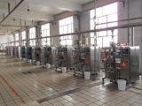 Machine à emballer complètement automatique de poudre/machine de conditionnement/emballage automatiques de poudre