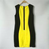 Farben-Block-Unterwasseratemgerät Bodycon Kleider der Damen