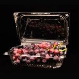 corte plástico de empaquetado de la fruta fresca del color del animal doméstico del rectángulo de la fruta y verdura 500g