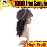 Wholesale Brazilian Natural Full Lace Braided Wigs for Black Women