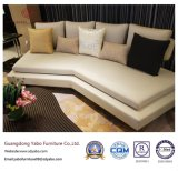 セットされる家具が付いている居間のための元のホテルの家具(YB-WS-22)