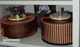Estabilizador servo da potência da fase monofásica com medidor do diodo emissor de luz AMP/Volt