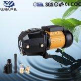 承認されるセリウムが付いているDp255-2深い井戸の水ポンプ