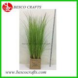 80 см H Завод Wholesales управления оформлением искусственных травяных ПВХ