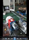 車付アプリケーション誘導電動機10kw3000rpm144V