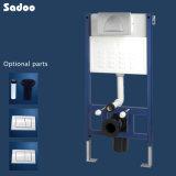 Скрытые, скрытые бачки для установки на стене висит туалет (SD009B)