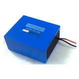 Bike e Electric elettrici Bicycle LiFePO4 Battery 48V 10ah