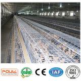 Le poulet neuf complètement automatique de poulette met en cage le système de matériel (un type le bâti)