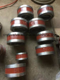 API594 verdoppeln Platten-doppeltes Flansch-Oblate-Rückschlagventil