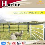 Austrália e Nova Zelândia Gado Galvanizado Painéis de ovinos