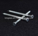 Ноготь конструкции & Decking общий гальванизированный стальной с хвостовиком кольца (STN07)