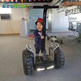 Vagone per il trasporto dei lingotti elettrico X2 della Cina per vendita calda della batteria di litio di prezzi di vendita