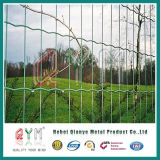 Ограждать волнистого железа загородки евро/PVC Caoted E/Голландии Fec