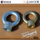 JIS 1169 Tipo de acero al carbono galvanizado Anillo Tuerca