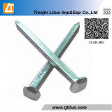 Fábrica Galvanizado Hot Dipped Galvanized Square Boat Nails