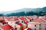 Красный цвет плитки крыши PVC ASA