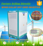 40kw 384VDC 127/220V 3 단계 변환장치 순수한 사인 파동 변환장치 낮은 주파수 힘 변환장치