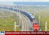 Профессиональный переход Китая железнодорожный к Ташкент