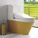 Красочные туалет Xm2013A