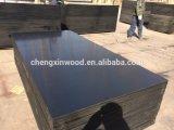 Пленка смотрела на переклейку 1250*2500*21mm Chengxin. (с 2001 ', ваш надежный поставщик с производственной линией 15) горячая переклейка сбывания