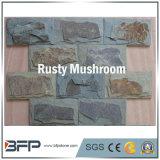 Les tuiles en ardoise naturelle champignon rouillé pour revêtement mural