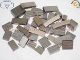 Het Segment van het Zandsteen van het Segment van het Graniet van het Segment van de Diamant van China
