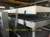 Linha de produção oca plástica de madeira de venda quente da folha/folha de Multiwall