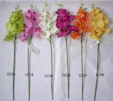 Fiori artificiali dell'orchidea 78.5cm Gu-D70090