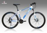 Vélo VTT avec une haute qualité /Mountain Bicycle (XC660)