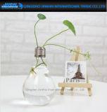 전구 모양 유리제 화병 대 꽃 Terrarium 콘테이너