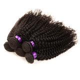 Verworrenes Haar-natürliche Haar-Extensionen, Jungfrau-mongolisches verworrenes lockiges Haar