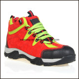 Zapatos de seguridad de la alta calidad del modelo del deporte del cuero genuino
